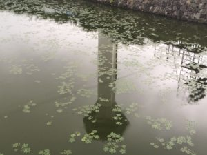 水面の五稜郭タワー
