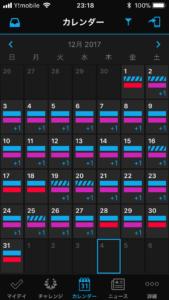 ガーミンコネクトによる12月の活動量