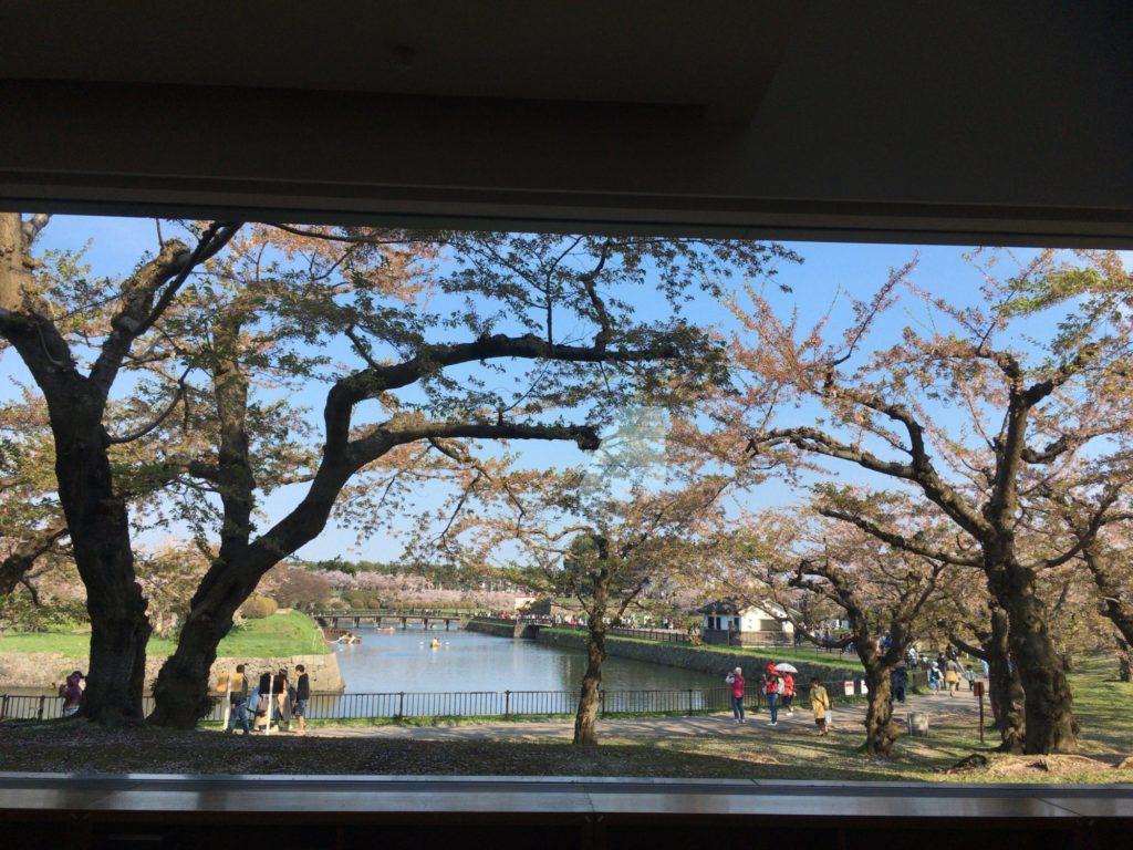 六花亭五稜郭店から眺める五稜郭公園