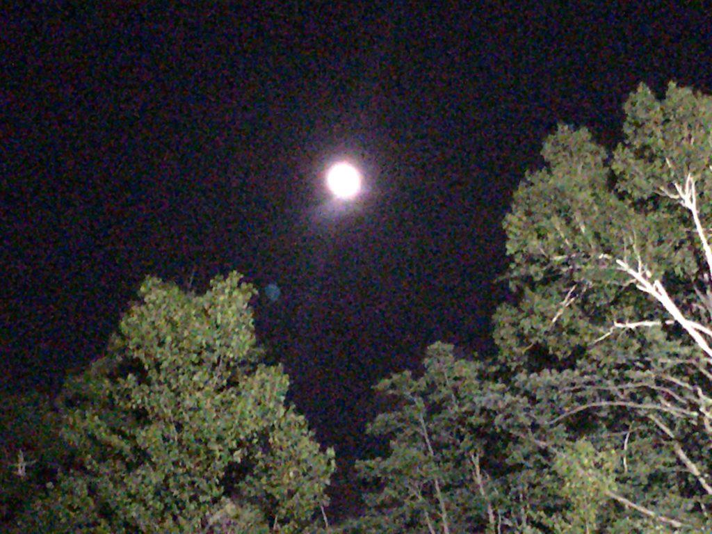 頂上からみた月