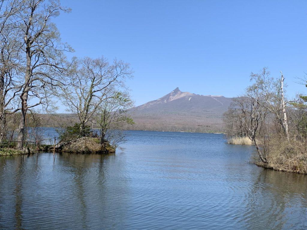 大沼からみる駒ヶ岳
